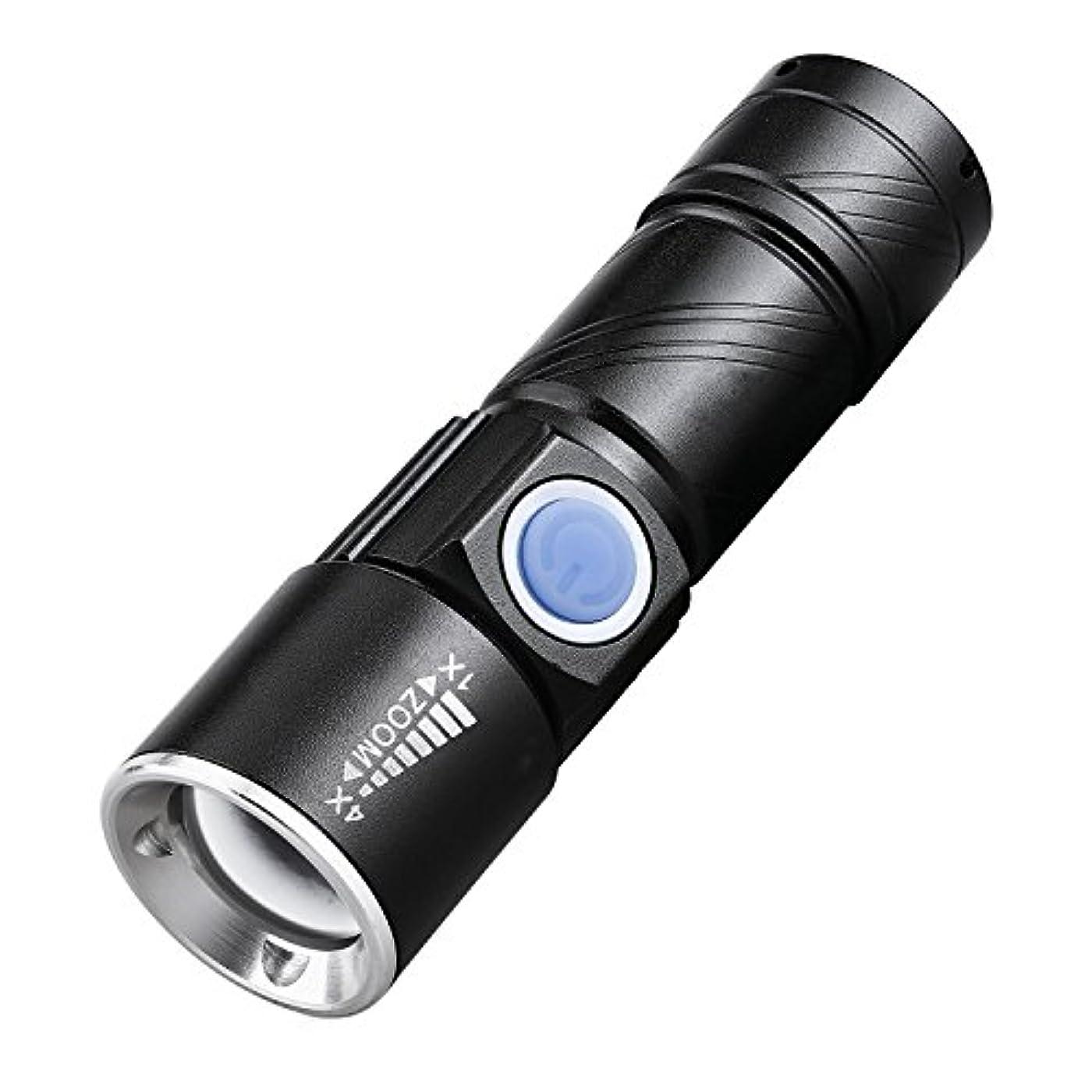 有力者インフレーションハーブUSB充電式 小型 LED ハンドライト 懐中電灯 アウトドア 電池不要 TEC-BLH015D