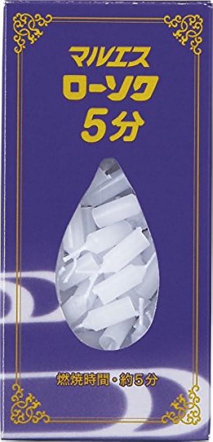 舗装する伝統太字マルエス 五分ローソク