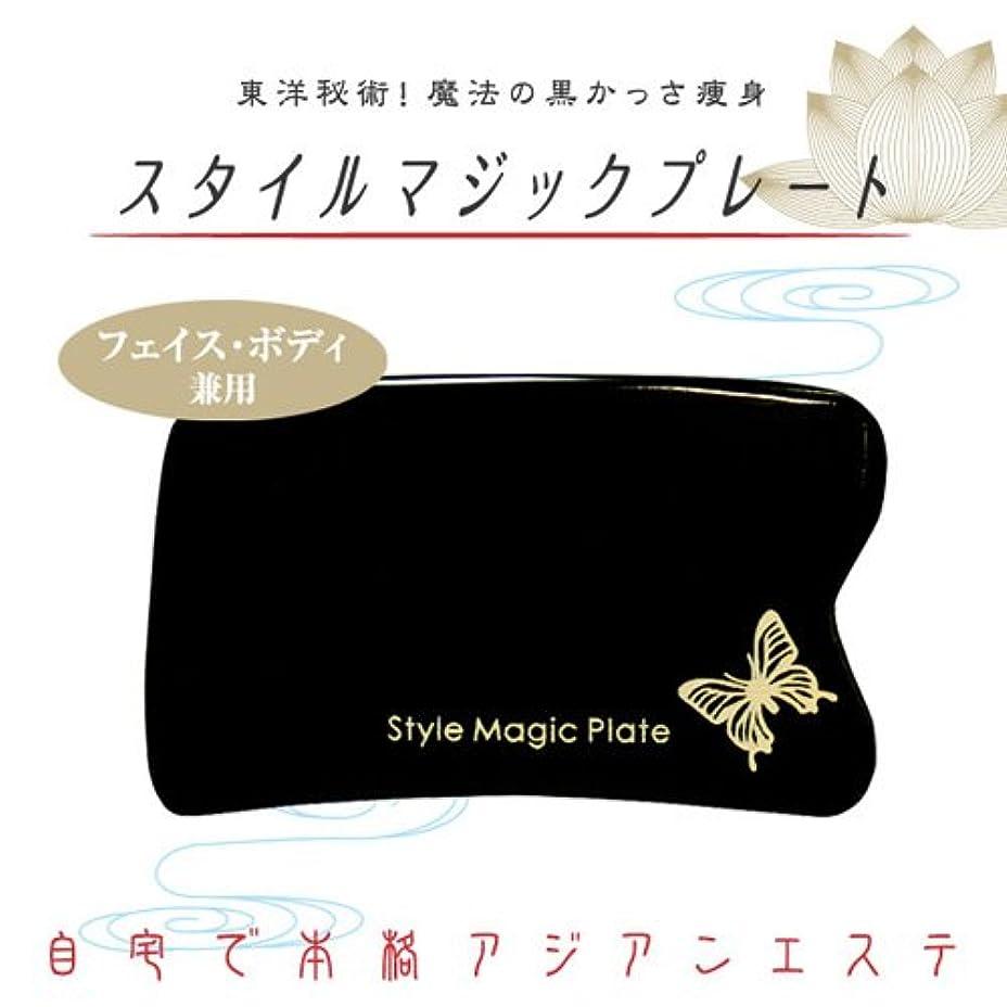 韓国語にはまって調べるかっさ 『スタイルマジックプレート』 水牛の角を使用した黒かっさ