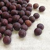 国産(山形県) 紅大豆 1kg