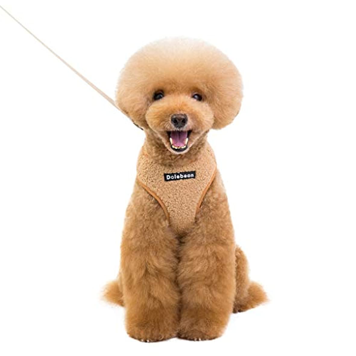 拮抗するジュニア多分Lazayyii 犬 ハーネス 胴輪 首輪 リード付き 小型犬 中型犬 犬用 出かけ 散歩 (M, イエロー)