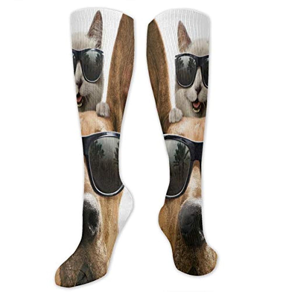脅かすかる農民メンズ面白い猫と犬の水分発散性のあるクルーソックスギフトハイキングソックス