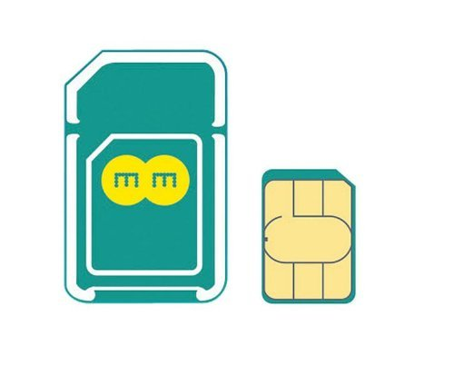 EE 4G SIM イギリス他ヨーロッパ各国対応【6GB / 90日タイプ】【並行輸入品】