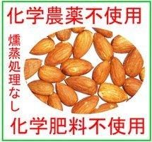 生 アーモンド 480g 無塩 無農薬(化学農薬不使用)栽培 無燻蒸原料使用 ACO認定品