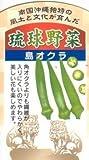 琉球野菜苗「島オクラ」2本セット