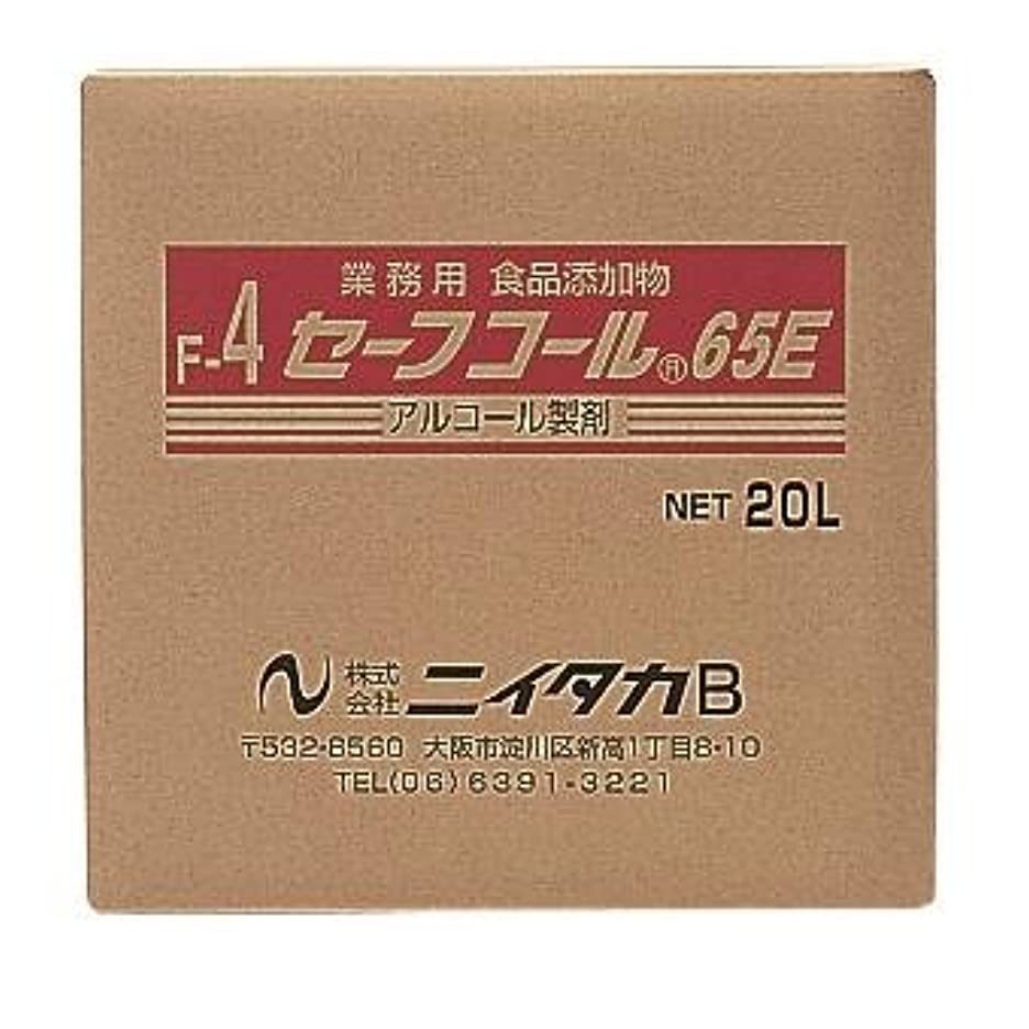 ハイキングガチョウマニアックニイタカ:セーフコール65E(F-4) 20L(BIB) 270302