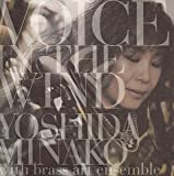 VOICE IN THE WIND (SACDハイブリッド盤)