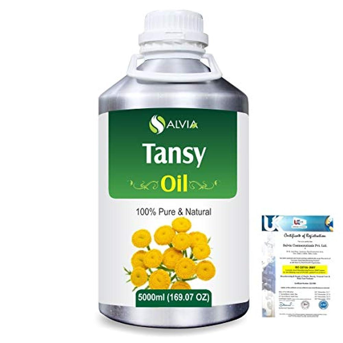 ベテラン早く賞Tansy (Tanacetum vulgare) 100% Natural Pure Essential Oil 5000ml/169fl.oz.