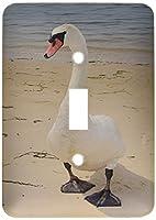 3drose LLC lsp 23233_ 1メスSwan at Beach Single切り替えスイッチ