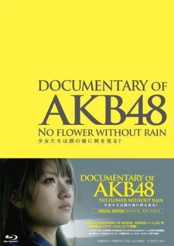 DOCUMENTARY OF AKB48 NO FLOWER WITHOUT RAIN 少女たちは涙の後に何を見る?  スペシャル・エディション(Blu-ray2枚組)