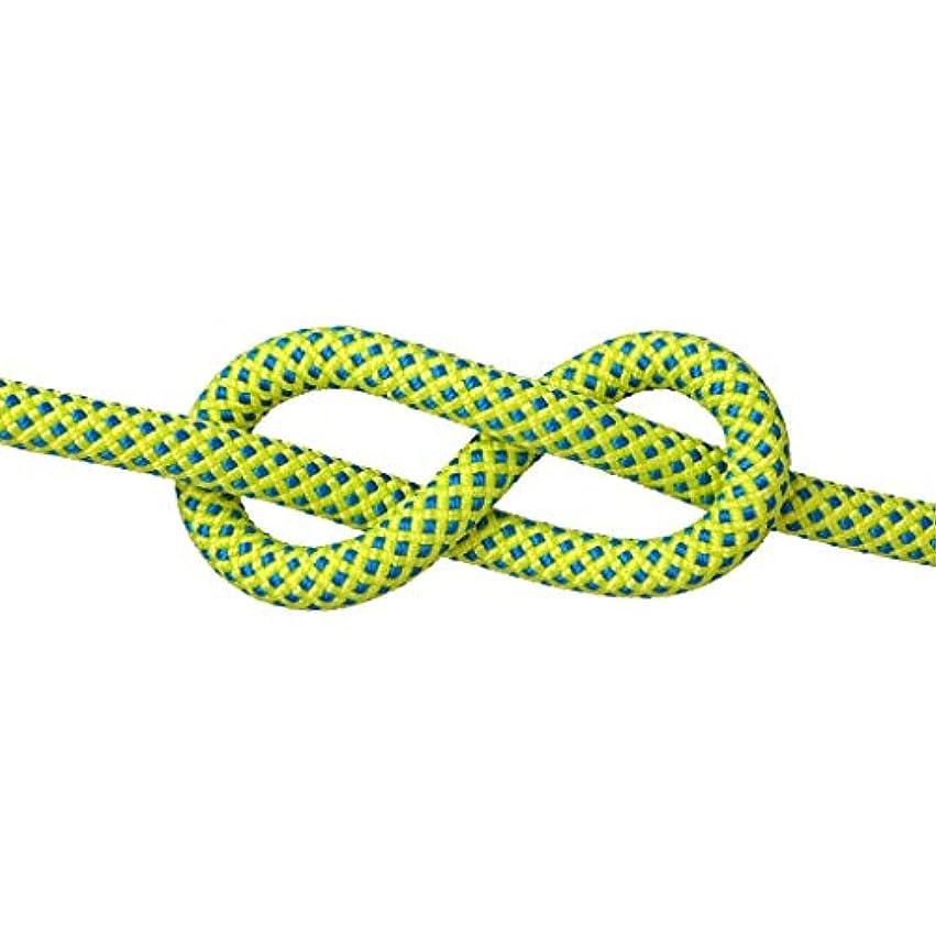 無秩序良心的クスコKTYXDE クライミングロープの命を救うエスケープロープスパイダーマンロープスピードドロップロープ様々なサイズの色 クライミングロープ (Color : E, Size : 10.5mm 40m)
