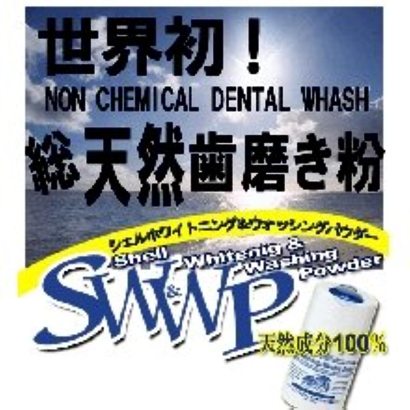 なぜならすべき変更可能Shell Whitening & Whashing Powder シェルホワイトニングパウダー