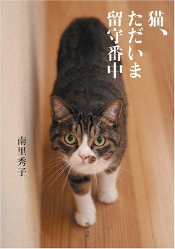 猫、ただいま留守番中