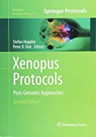 Xenopus Protocols: Post-Genomic Approaches (Methods in Molecular Biology)