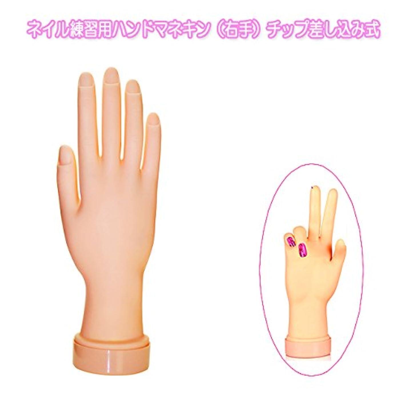 普遍的なずらす知っているに立ち寄るネイル練習用ハンドマネキン(右手)チップ差し込み式