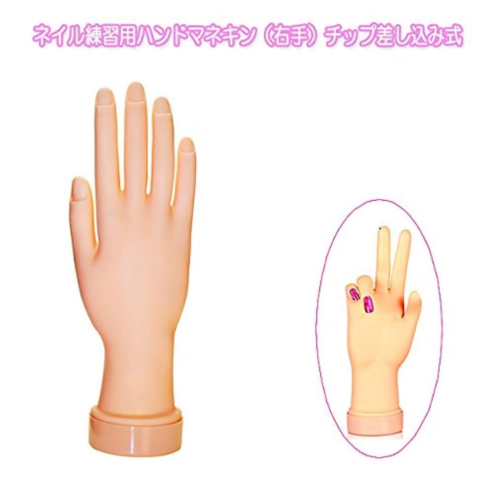 光沢のある同意するタックネイル練習用ハンドマネキン(右手)チップ差し込み式