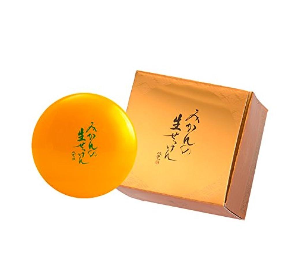 デザイナー真鍮訪問美香柑 みかんの生せっけん 洗顔石鹸 無添加 スパチュラ?泡立てネット付 大容量 ジャータイプ 120g