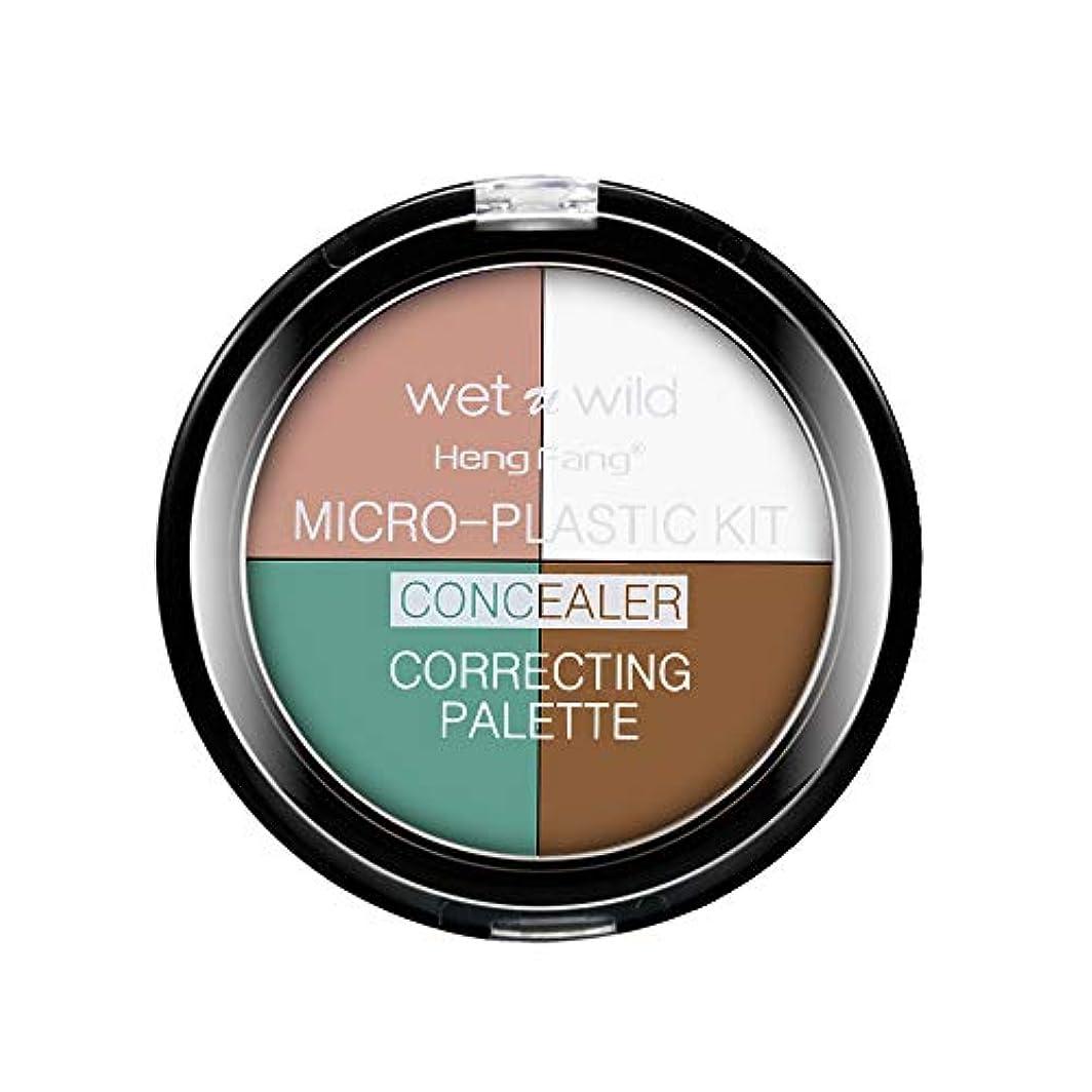 マイクロフォン影響する肯定的リキッドファンデーション クリームファンデーション カバー力 エッセンスモイスト コンシーラー ファンデーション カバーパーフェクション チップコンシーラー 色白 明るい肌