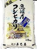 新潟県北魚沼産(産地直送 広瀬・守門産) 白米 コシヒカリ 5kg 28年産