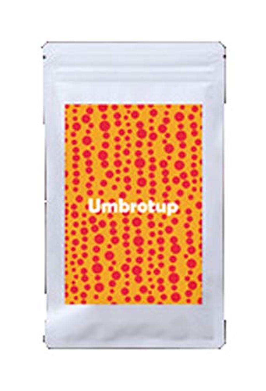 社会主義者信じるゴミ箱を空にするUmbrotup(アンブロタップ)