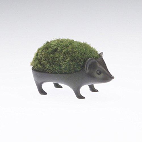 能作 苔盆栽 はりねずみ 子-青銅 (花器)