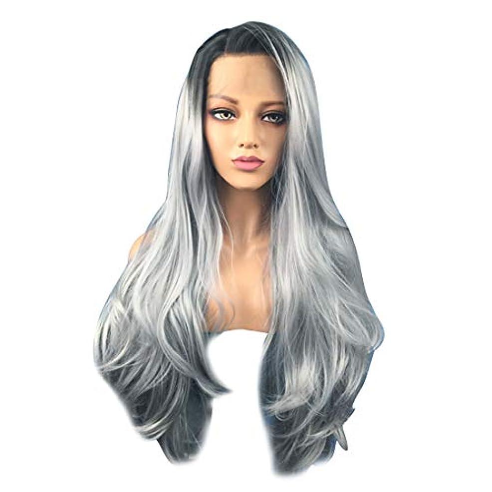 賠償センチメンタルダルセットFuku つけ毛 無料ウィッグキャップで女性コスプレパーティーウィッグのための64センチメートル長い巻き毛オンブルグレーウィッグ (色 : 写真の通り)