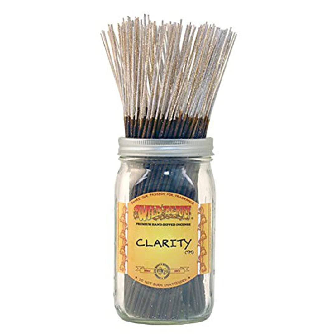 お風呂を持っている敵対的直接Wild Berryクラリティ、Highly Fragranced Incense Sticksバルクパック、100ピース、11インチ