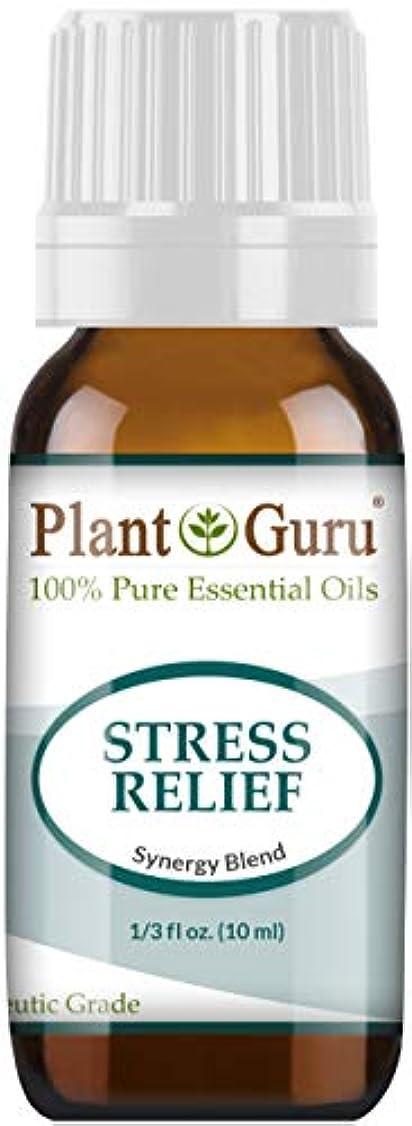 蒸し器服限定Stress Relief Synergy Blend Essential Oil. 10 ml. 100% Pure, Undiluted, Therapeutic Grade. (Bergamot, Patchouli...
