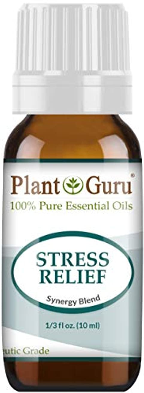 健全無一文番目Stress Relief Synergy Blend Essential Oil. 10 ml. 100% Pure, Undiluted, Therapeutic Grade. (Bergamot, Patchouli...