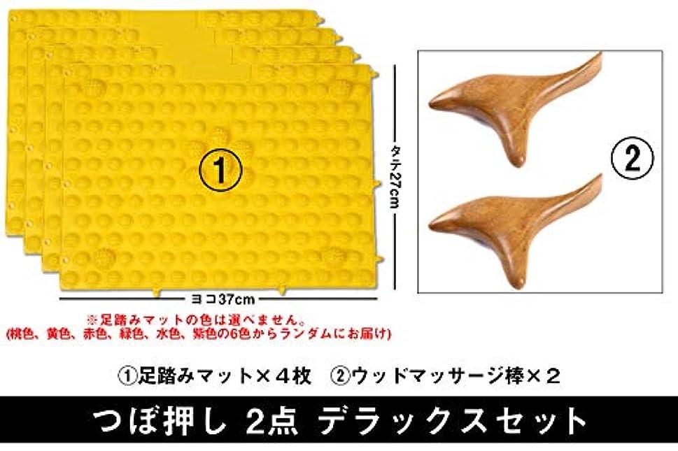 シールドコンテンポラリースケートつぼ押し 2点 デラックスセット (足つぼ 足裏 肩 首 マッサージ マット) (ウッドマッサージ×2 マット×4枚)