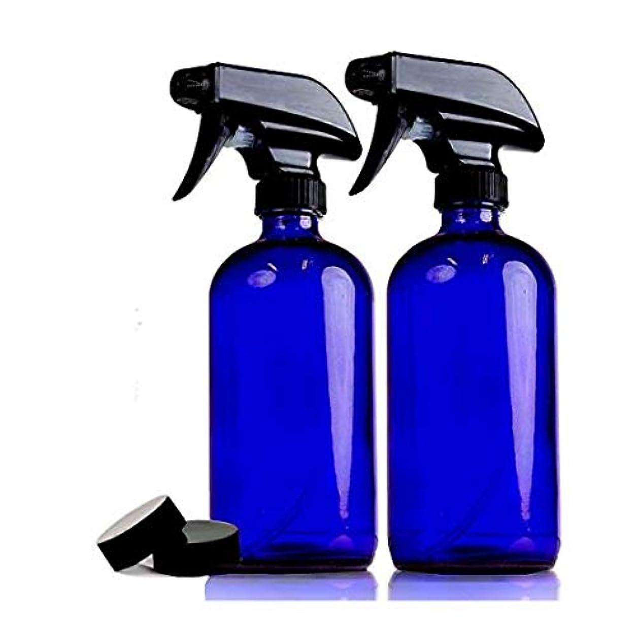 告白するクラス柱2本セット 遮光瓶 コバルトブルー ガラス スプレー ボトル 470ml 青ボトル [並行輸入品]