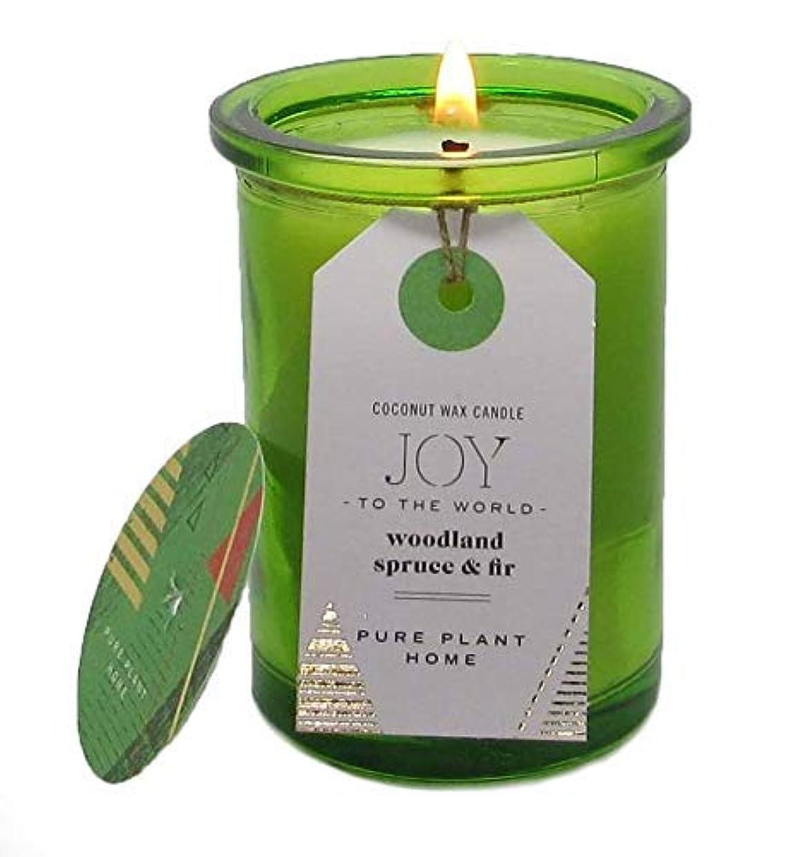 ピクニック時折ウイルスピュア植物ホームSpruce & Fir Coconut Wax Candle
