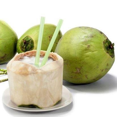 ヤシの実 やしの実 椰子の実 1玉 2.2kgUP