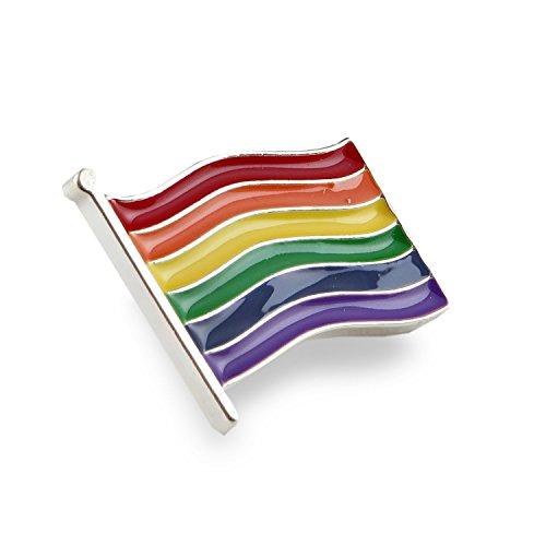 LGBT レインボーリボン ピンバッジ 小 フラッグ プライド 性的少数者 アウェアネス ハッチ 高級感