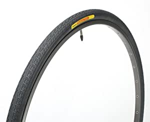 パナレーサー タイヤ パセラ ブラックス [W/O 700x25C] 8W725-18-B