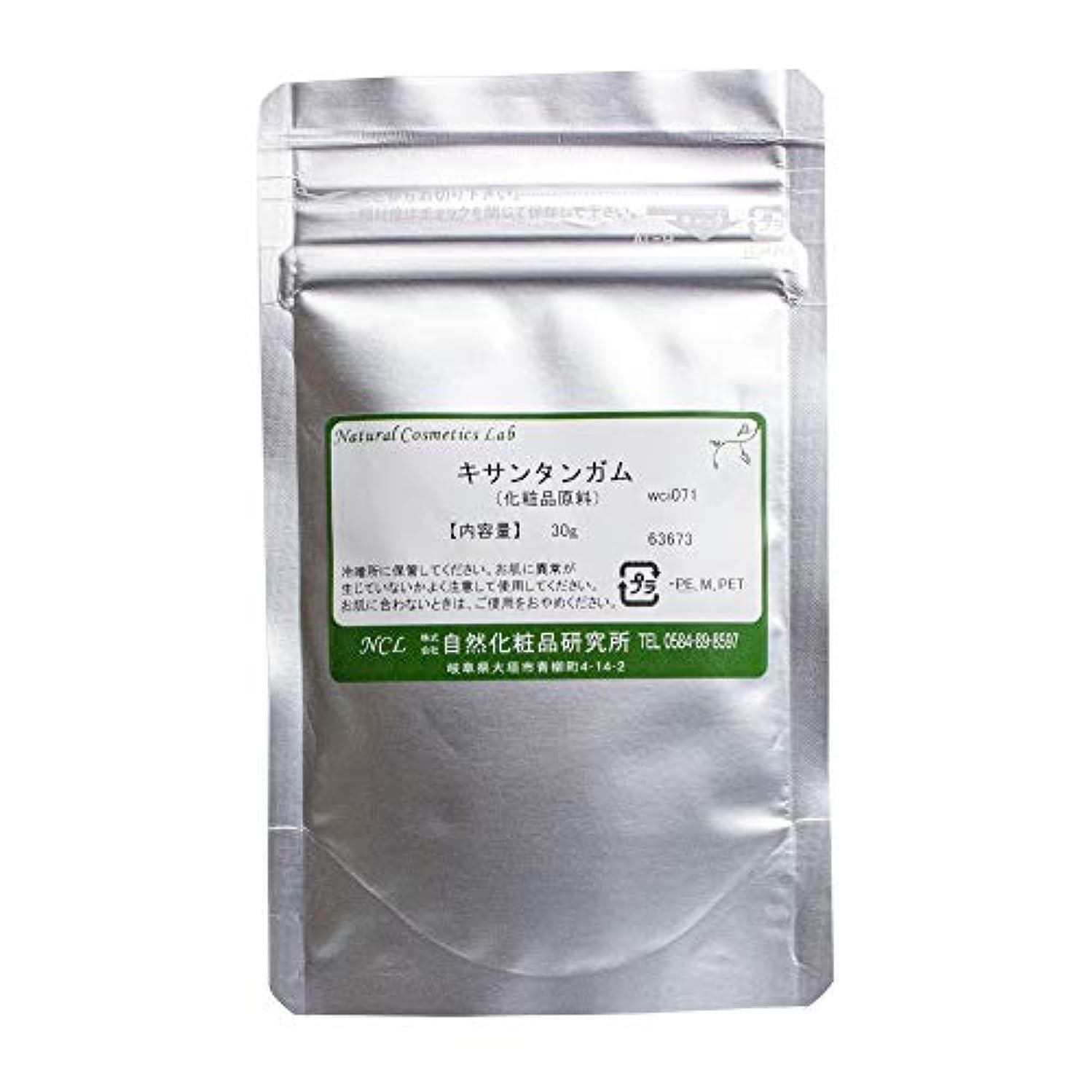 調和のとれた特徴づける修正キサンタンガム 30g 【手作り化粧品原料】