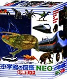 小学館の図鑑 NEO 最新6冊セット