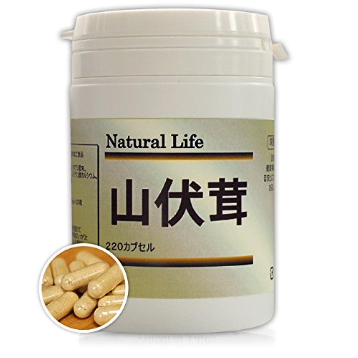 満州ペレット魚ヤマブシタケカプセル[220粒]天然ピュア原料(無添加)健康食品(山伏茸,やまぶしたけ)