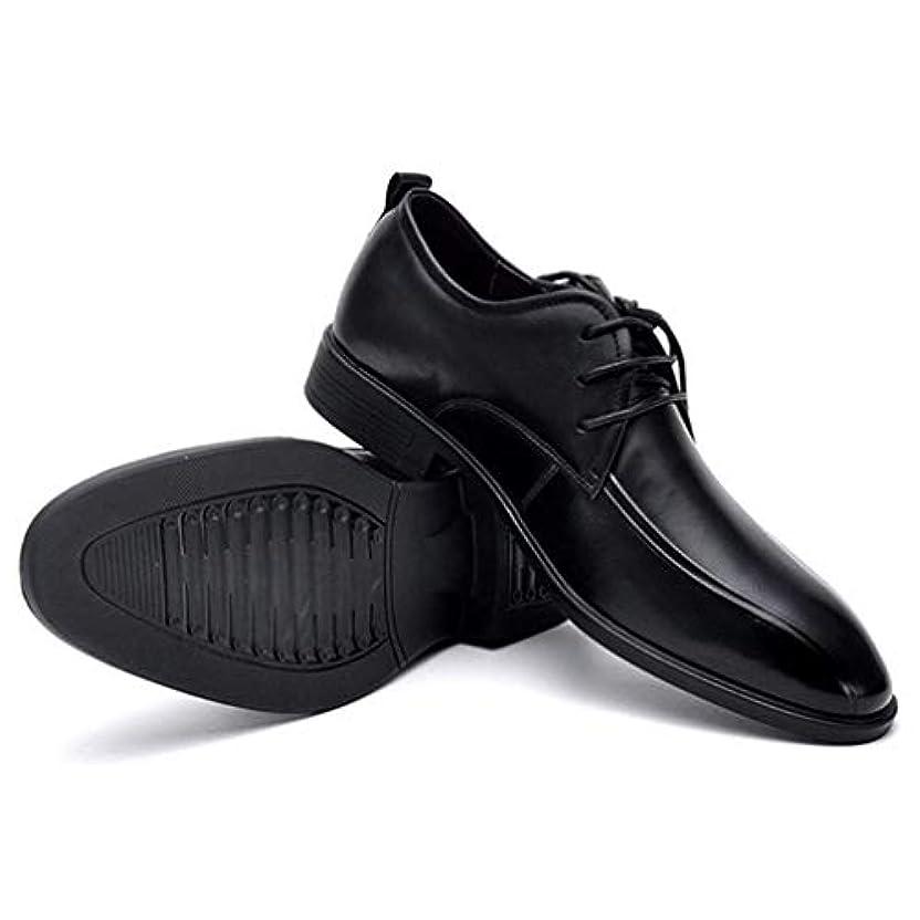 カテナ西束ねるビジネスシューズ 紳士靴 メンズシューズ プレーントゥ メンズ 歩きやすい革靴 防水 通勤 革靴 外羽根 シューズ 父の日 24.0cm 24.5cm 25.0cm 25.5cm 26.0cm 26.5cm 27.0cm