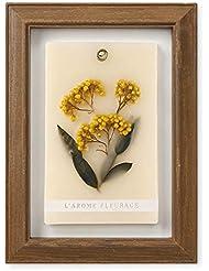 FLEURAGE(フルラージュ) アロマワックスサシェ フレンチミモザの香り Baby'sBreath×AntiqueBrown KH-61120