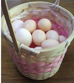 食用 烏骨鶏の卵 3個入り