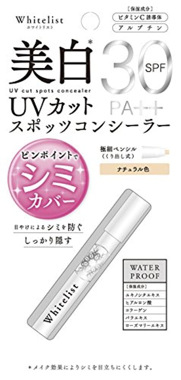 引き潮不適当簡単なN.U.P. UVカットスポッツコンシーラー 1個