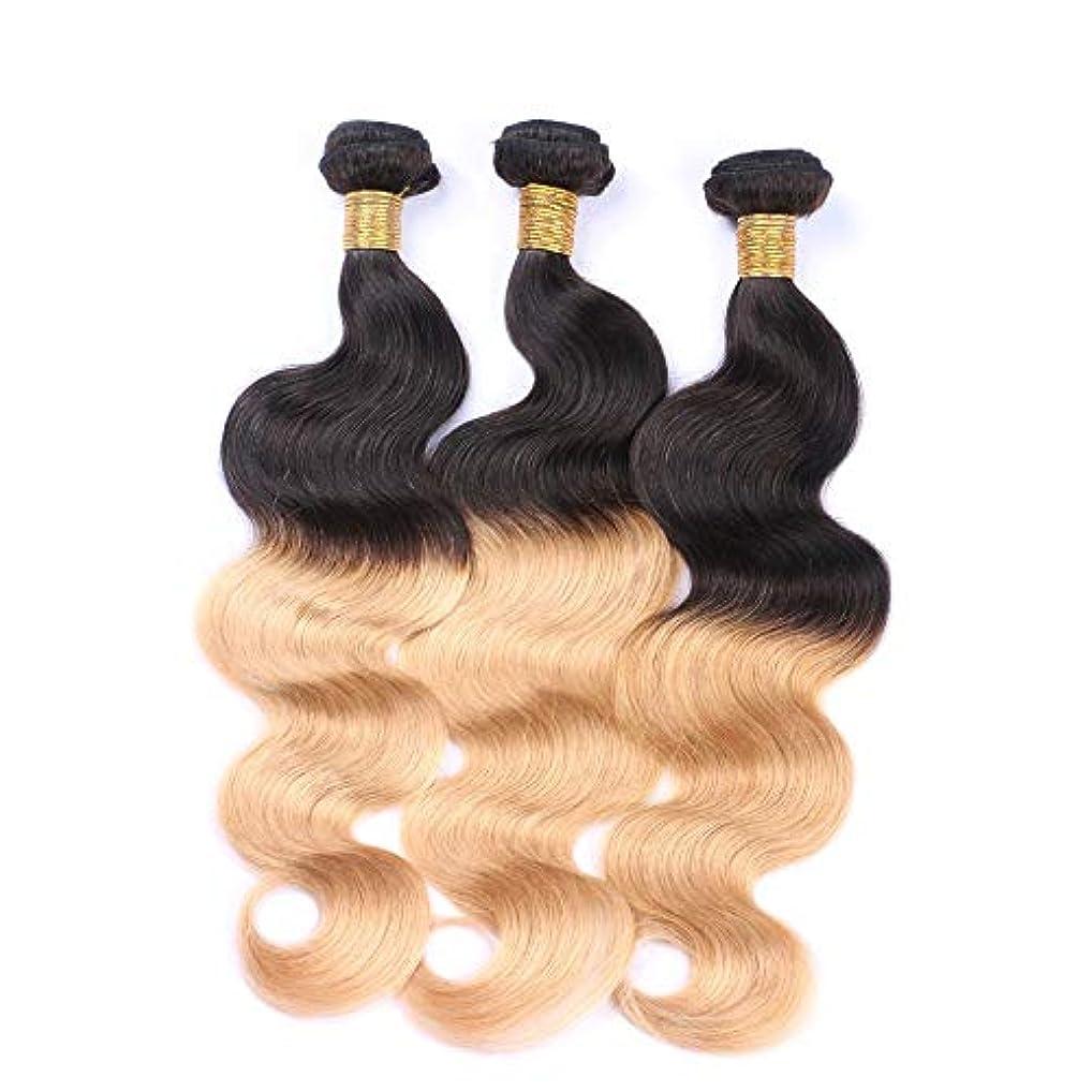 しばしば磨かれた透けて見えるMayalina オンブルブラジル実体波髪バンドル未処理の人間の髪の毛の拡張子 - #T1B / 27黒から2トーンの色1バンドルロールプレイングかつら女性の自然なかつら (色 : Blonde, サイズ : 22 inch)