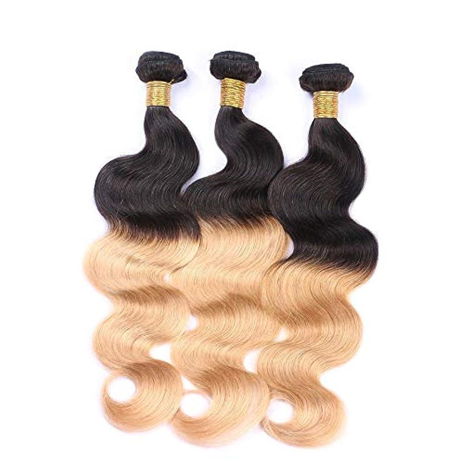 肯定的酸度名目上のWASAIO 女性バンドル未処理の人間の髪の拡張機能のためのショートバングウィッグロングフィンガー波状のかつら - #1 T1B / 27ブラックにブロンド2トーン色1つのバンドル (色 : Blonde, サイズ : 18 inch)