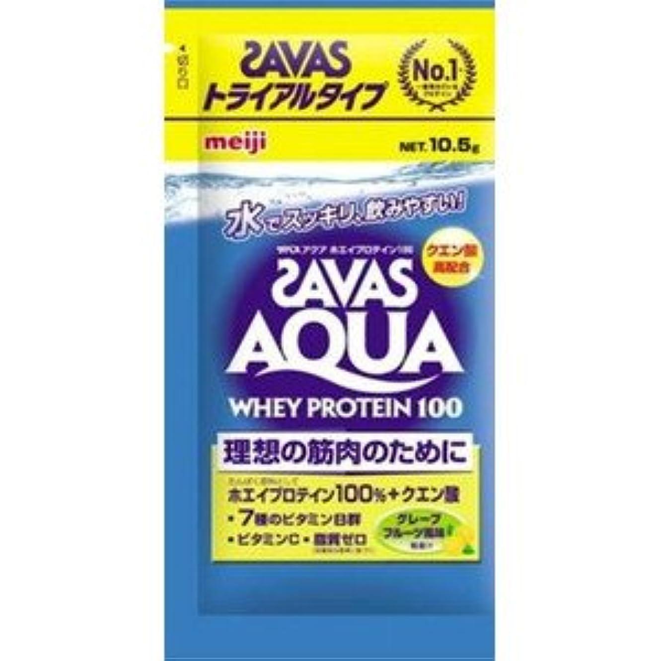 (ロート製薬)肌研 極潤ヒアルロン洗顔フォーム 100g(お買い得3本セット)