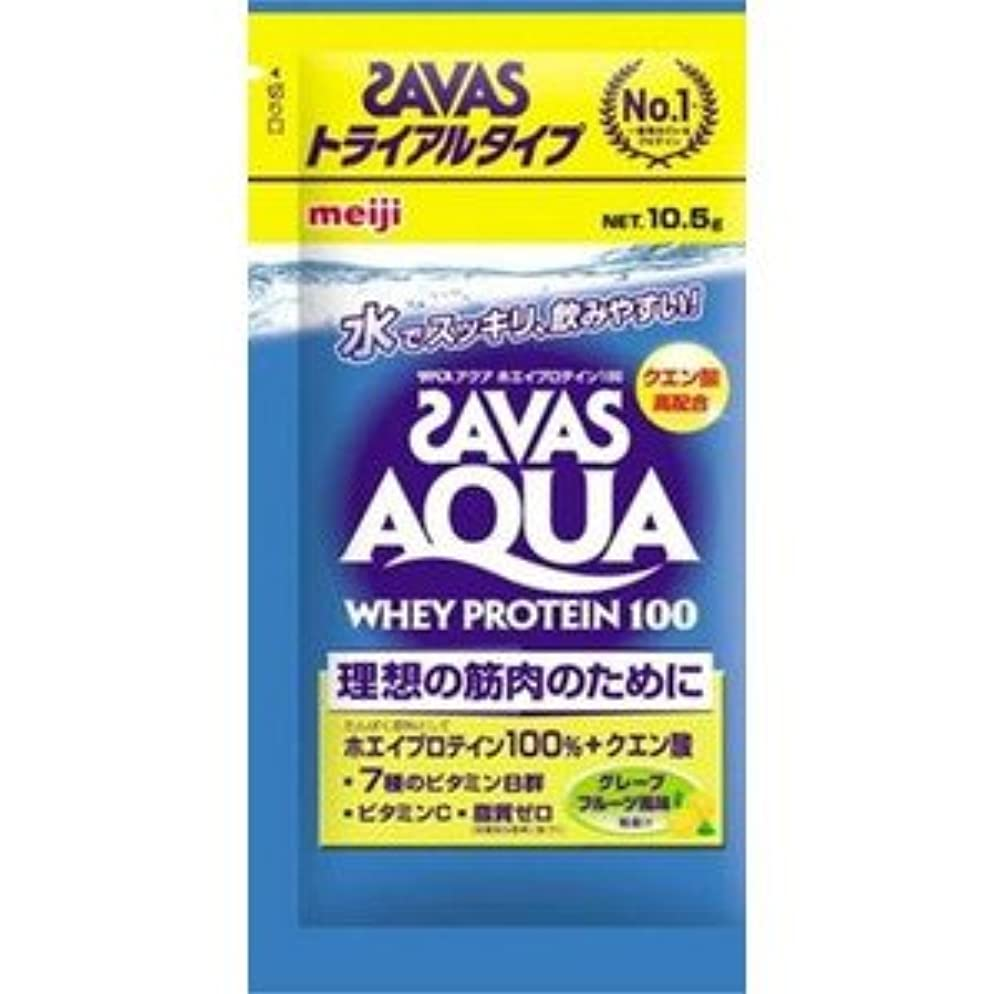 櫛不道徳変更(ロート製薬)肌研 極潤ヒアルロン洗顔フォーム 100g(お買い得3本セット)