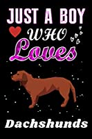 Just a Boy who loves Dachshunds: Dachshunds  Lover notebook or dairy, Perfect Dachshunds  lovers Notebook gift for Boy