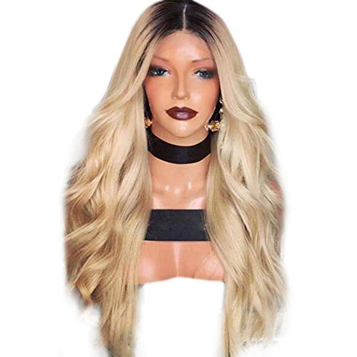 明らかにラビリンス電化するYESONEEP かつら長い巻き毛黒グラデーションイエローマイクロロール長い髪かつらヘッドギア合成髪レースかつらロールプレイングかつら (色 : Photo Color, サイズ : 65cm)