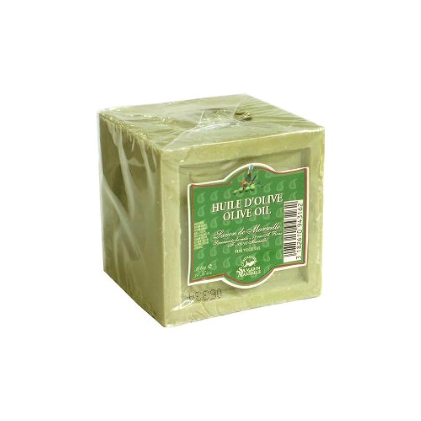 寛容な自分のためにレクリエーションマルセイユ石鹸 オリーブ300g