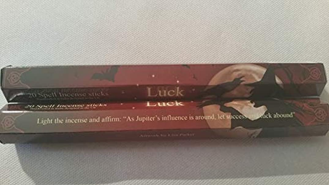 経験者偽装するブル6 Packs Of Luck Spell Incense Sticks By Lisa Parker